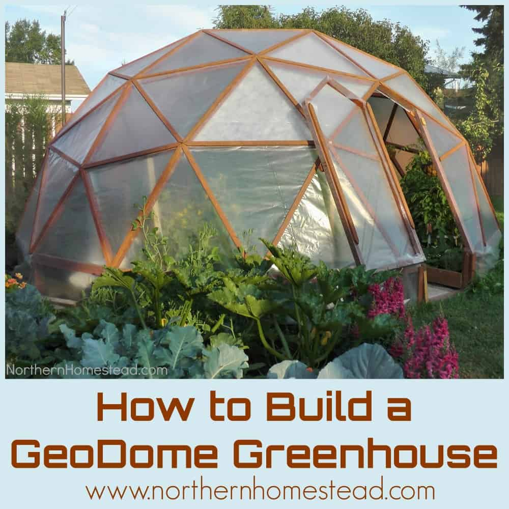Geodome Style