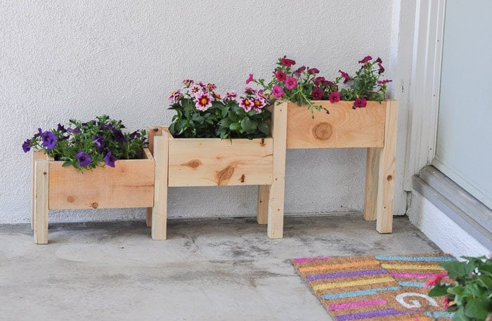 Tiered Row Planter