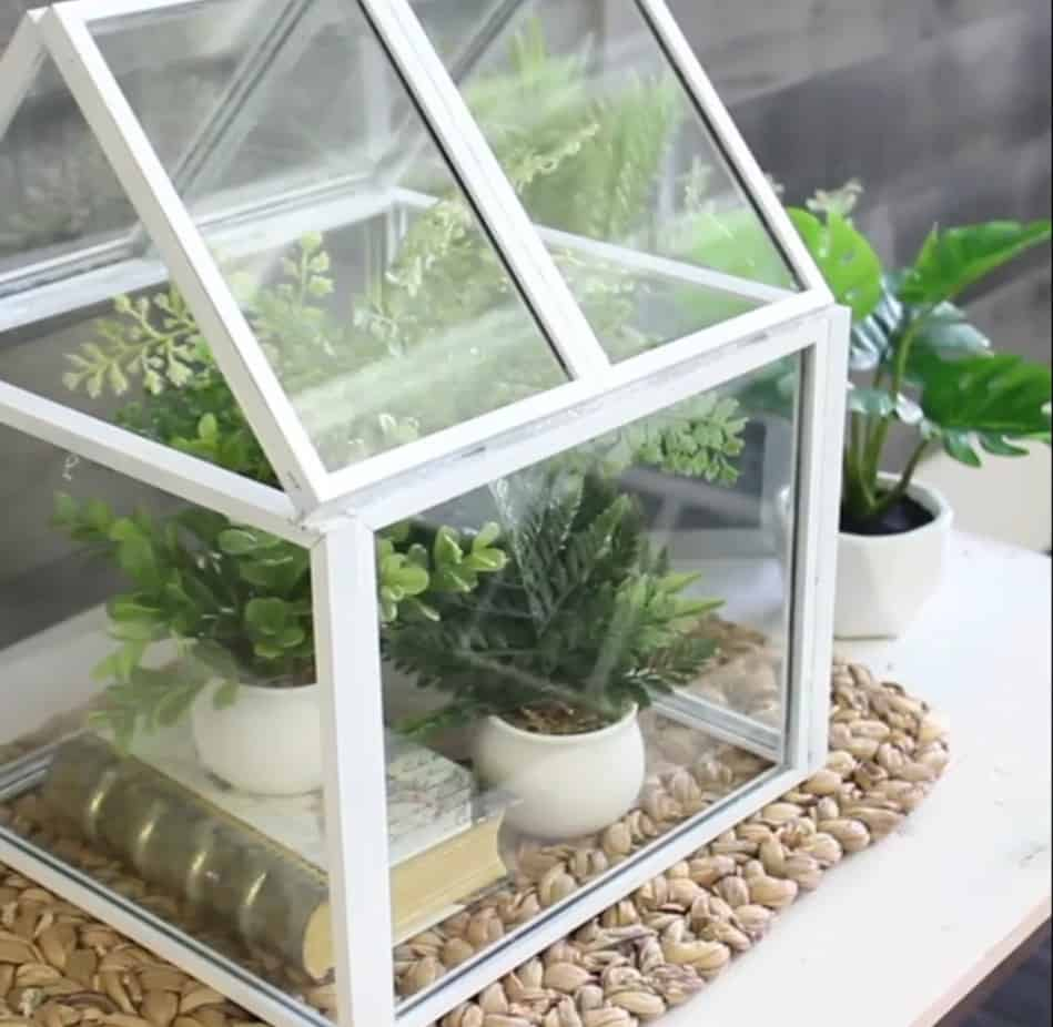 Picture Frame Table Top Greenhouse