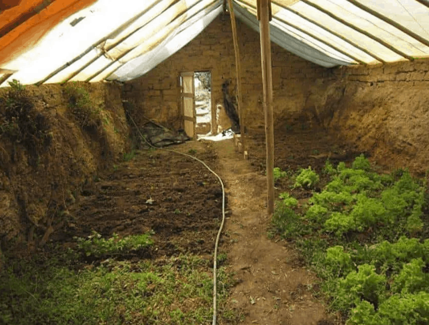 In-Ground Greenhouse