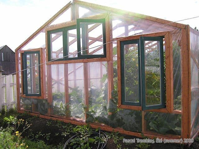 Reclaimed Windows on Traditional Greenhouse